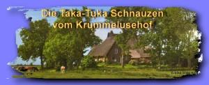 Taka-Tuka-Schnauzen