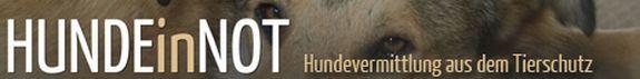 hunde-in-not-logo
