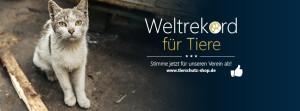 Facebook-Titelbild-Weltrekord-für-Vereine_katze